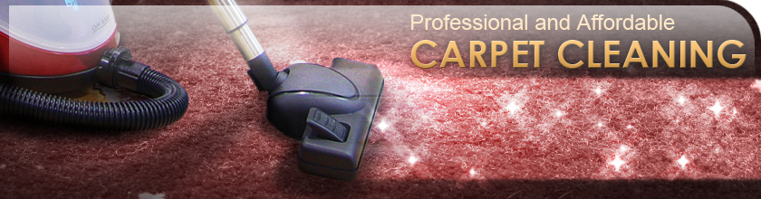 Professional and Affordable Carpet Cleaning
